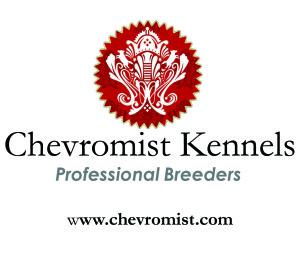 Chevromist Kennels